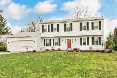 Cuyahoga County Single Family Home For Sale: 6920 Longview Dr