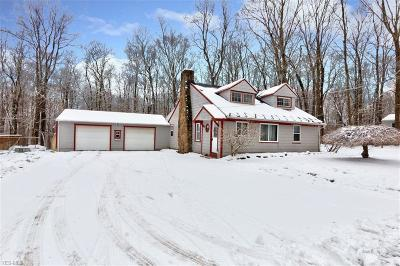 Chardon Single Family Home For Sale: 124 Cornelia Dr