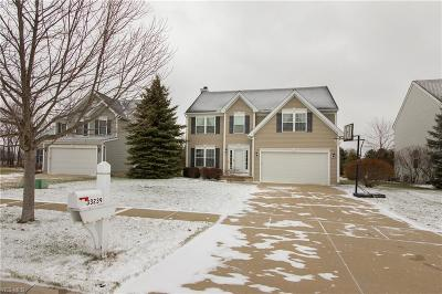 Avon, Avon Lake Single Family Home For Sale: 33239 Ambleside Dr