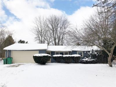 Geauga County Single Family Home For Sale: 12810 Heath Rd