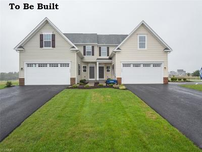 Lorain County Single Family Home For Sale: 179 Granger Ct