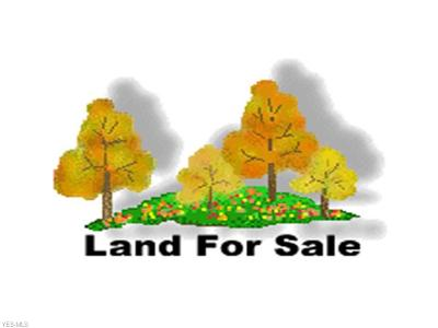 Lake County Residential Lots & Land For Sale: McMackin Rd