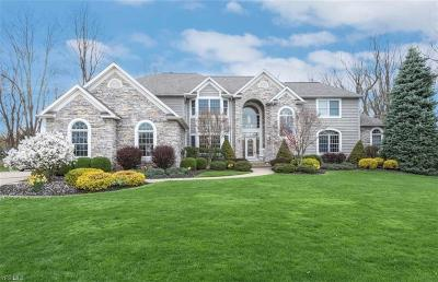 Brecksville, Broadview Heights Single Family Home For Sale: 4567 Hunting Valley Ln