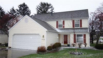 Lake County Condo/Townhouse For Sale: 6003 B Halle Farm Dr