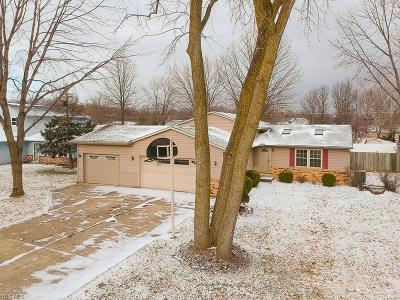 Lorain County Single Family Home For Sale: 402 Oaknoll Dr