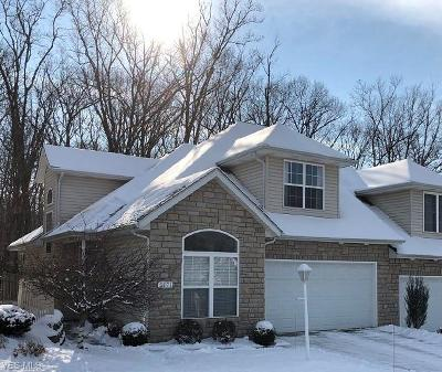 Cuyahoga County Condo/Townhouse For Sale: 5271 Rolling Meadow Dr #E-1