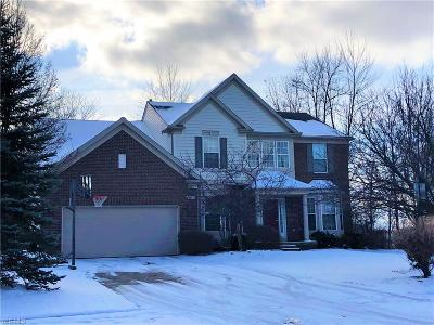 Brecksville, Broadview Heights Single Family Home For Sale: 1700 Hamilton Dr