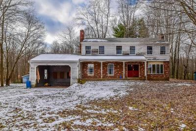Ravenna Single Family Home For Sale: 5201 Rootstown Rd