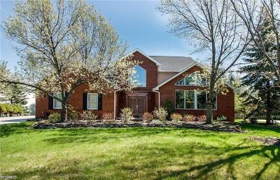 Brecksville Single Family Home For Sale: 2568 Crane Creek Pky