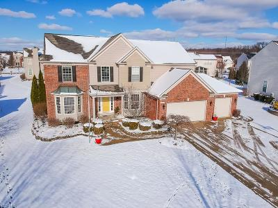 Broadview Heights Single Family Home For Sale: 983 Shelton Cir