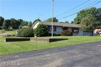 Zanesville Commercial For Sale: 2880 East Pike
