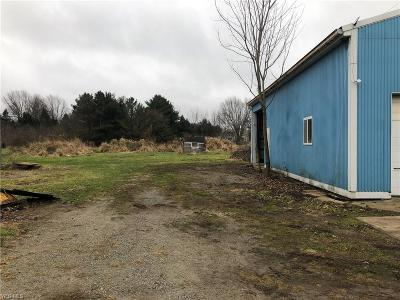 Lorain County Residential Lots & Land For Sale: Milan Avenue