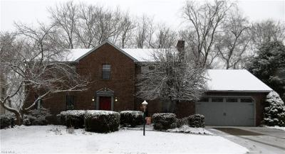 Vienna Single Family Home For Sale: 1205 Greenmont Hills Dr