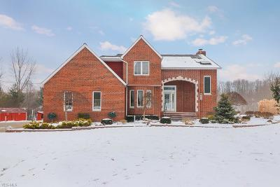 Chesterland Single Family Home For Sale: 9121 Mulberry Rd
