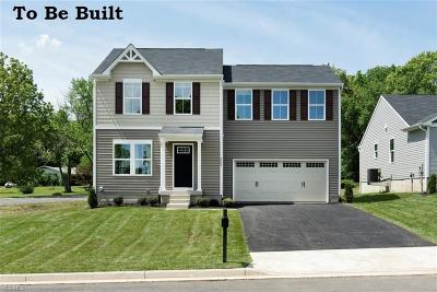Chippewa Lake Single Family Home For Sale: 63 Burlington Dr