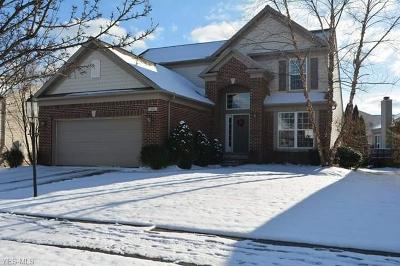 Brecksville, Broadview Heights Single Family Home For Sale: 981 Kendal Dr