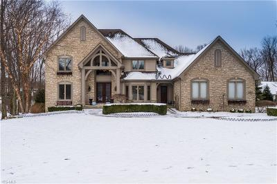 Brecksville, Broadview Heights Single Family Home For Sale: 6567 Summer Wind Dr