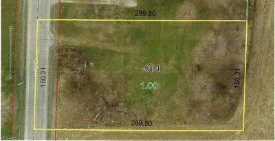 Lorain County Residential Lots & Land For Sale: 9281 Oberlin Rd