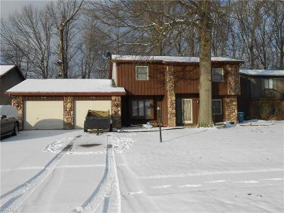 Lorain County Multi Family Home For Sale: 2724-2726 Forest Ln