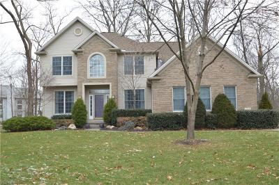 Avon, Avon Lake Single Family Home For Sale: 2374 Glenwood Ln