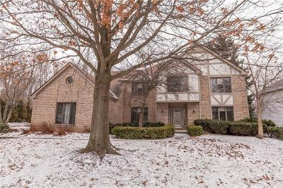Strongsville Single Family Home For Sale: 17114 Willow Wood Dr