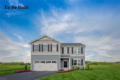Chippewa Lake Single Family Home For Sale: 30 Burlington Dr