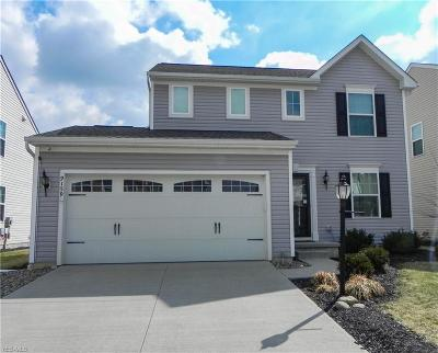 North Ridgeville Single Family Home For Sale: 9159 Stonegate Cir
