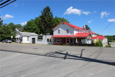 Ashtabula County Single Family Home For Sale: 513 East Main Usr 322 St