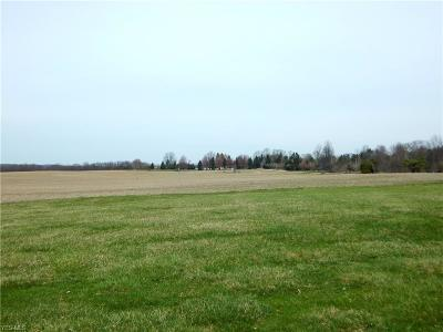 Medina County Residential Lots & Land For Sale: 7400 Beach Rd