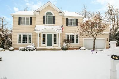 Geauga County Single Family Home For Sale: 146 Holly Ln