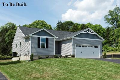 Chippewa Lake Single Family Home For Sale: 62 Burlington Dr