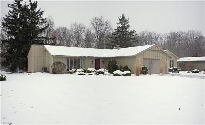 Strongsville Single Family Home For Sale: 15231 High Point Rd