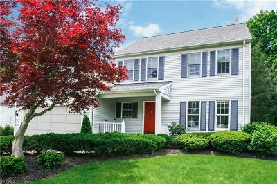 Chagrin Falls Single Family Home For Sale: 25 High Ct