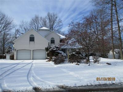 Lorain County Single Family Home For Sale: 98 Hickory Hollow Dr