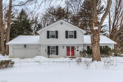 Mentor Single Family Home For Sale: 7676 Fairview Ave