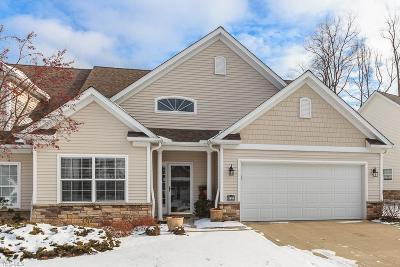 Concord OH Condo/Townhouse For Sale: $239,900