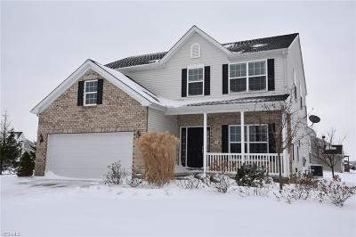 Lorain County Single Family Home For Sale: 37533 Hunter Lake Dr