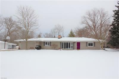 Brecksville, Broadview Heights Single Family Home For Sale: 6822 Hawthorne Dr