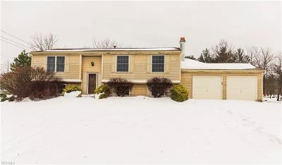North Royalton Single Family Home For Sale: 8501 Yorkview Dr