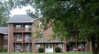 Brecksville, Broadview Heights Condo/Townhouse For Sale: 1150 Tollis #321
