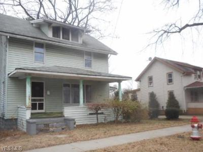 Painesville OH Single Family Home For Sale: $29,999