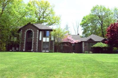 Brecksville, Broadview Heights Single Family Home For Sale: 113 Countryside Dr