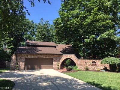 Strongsville Single Family Home For Sale: 17001 Stag Thicket