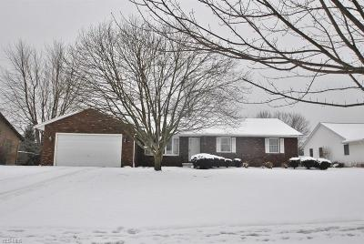 Wadsworth Single Family Home For Sale: 169 Stauffer Dr