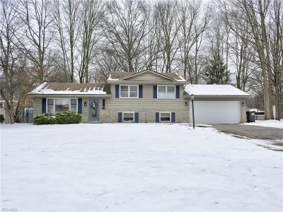 Boardman Single Family Home For Sale: 6875 Colleen Dr