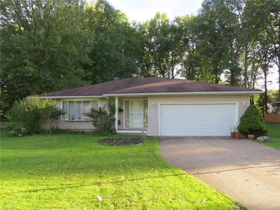 Single Family Home For Sale: 27739 Dunford Rd