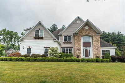 Hudson Single Family Home For Sale: 142 Meghans Ln