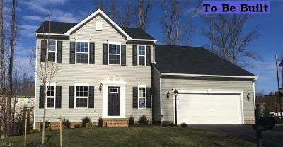 Lorain County Single Family Home For Sale: 62 Winfield Ln