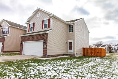 Painesville Township OH Single Family Home For Sale: $189,995