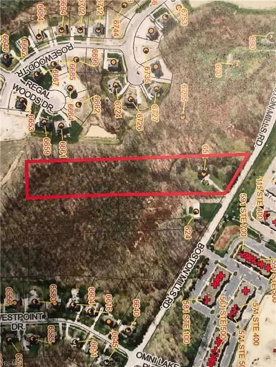 Hudson Single Family Home For Sale: 652 Boston Mills Road